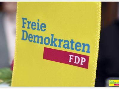 2017 Eindrücke vom Ortsparteitag des FDP Ortsverbandes Neunkirchen